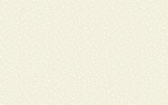 Patchworkstoff, Essentials Star, White on cream,306 Q2 Weiß auf Creme