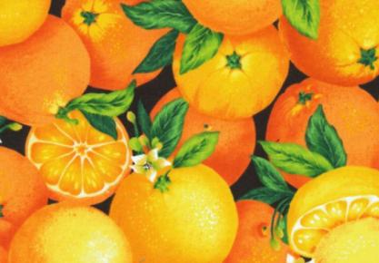 Gemüseküche Patchworkstoff Orangen Farmer S Garden Gemüse Küche