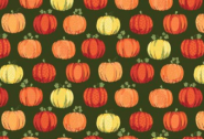 Patchworkstoff, Kürbis, Herbst, Good Life Pumpkins, makower, 2027